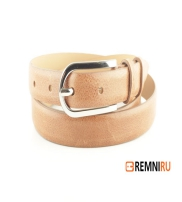 REMNI Collection  2015