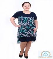 Sharkan Shop Collection  2015
