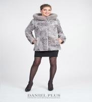 Daniel Plus Collection Fall/Winter 2016