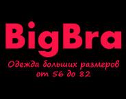 BigBra